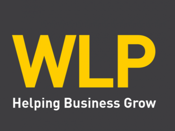 WLP Management Consultants